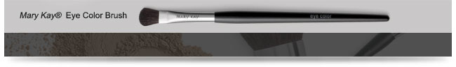 Mary Kay® Eye Color Brush